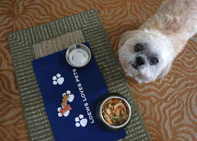 Pet-Friendly Hotels Offer Room Service And Massages For Dogs