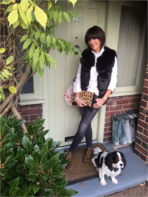 My Midlife Fashion, Faux Fur Gilet, Leopard Print, Animal Print, Zara Biker Jeans, Boden Joni B leopard print ankle boots, Bella Jane Jewellery, H and M Ruffle Shirt