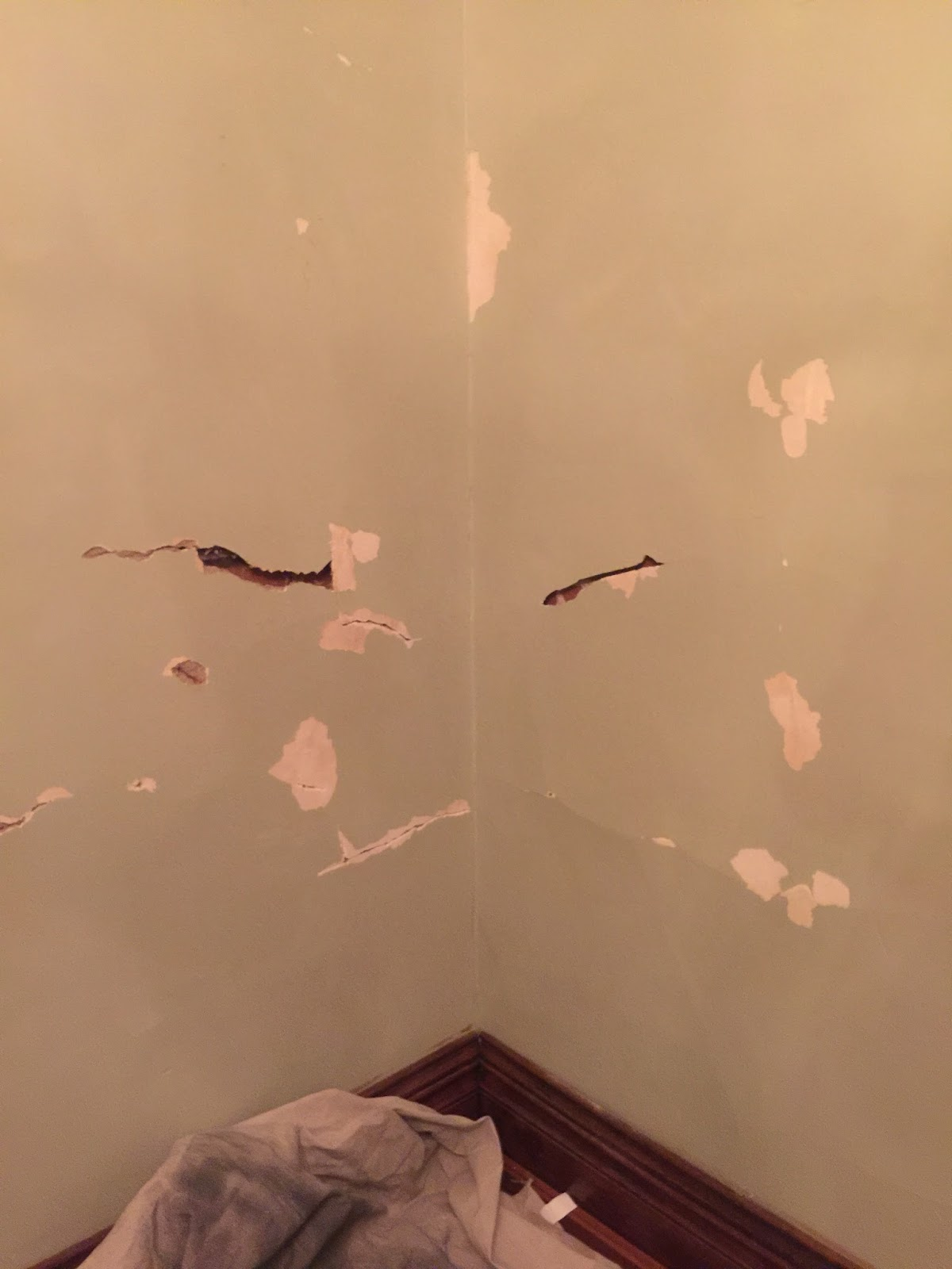 To Fix Detached Plaster Ly Pressure The Area Determine Where Has Broken Away From Wall With A 3 16 Masonry Bit Drill Holes