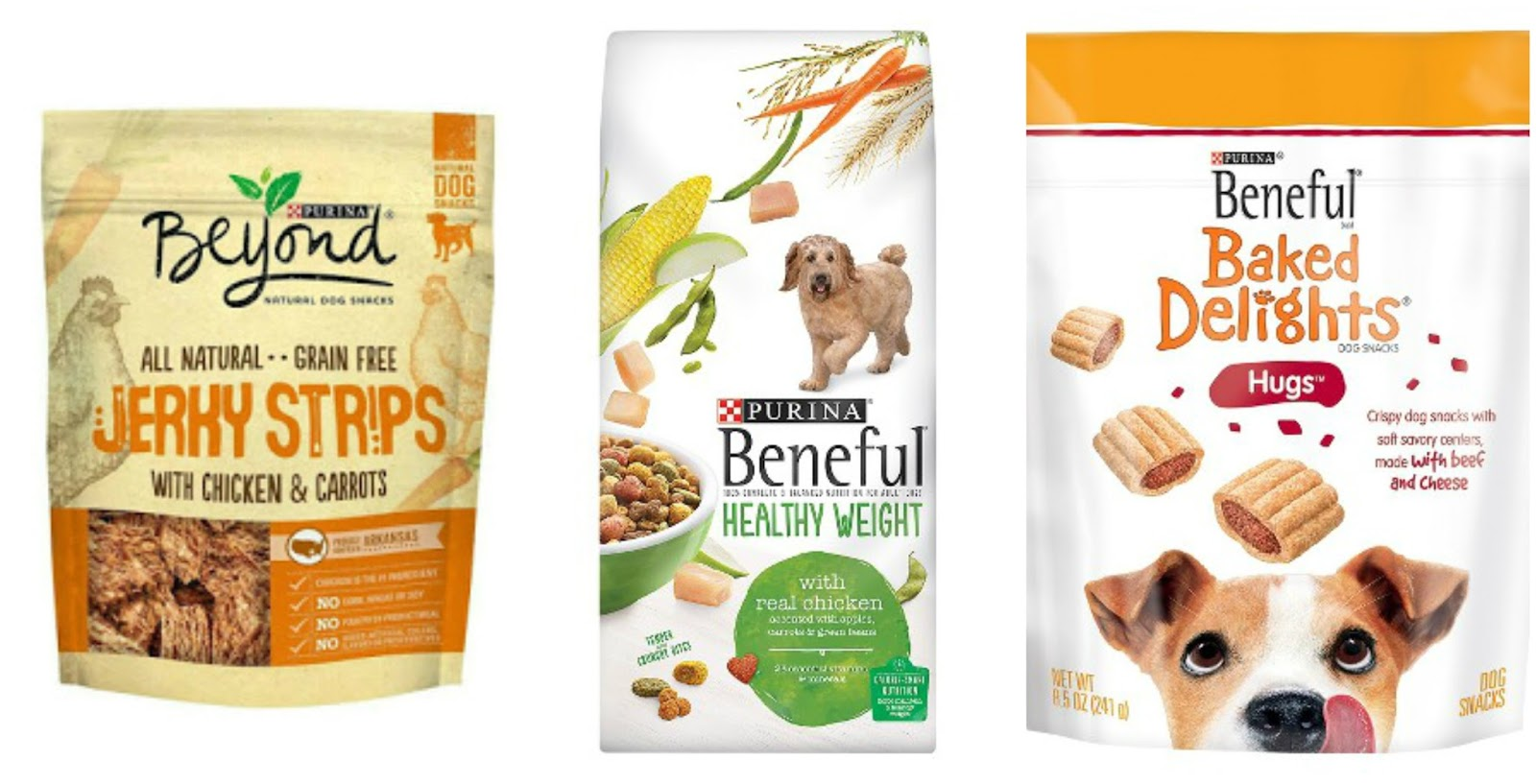 Purina Beyond Grain Free Dog Food Can