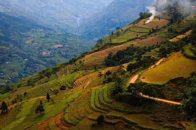 Hoang Su Phi terraced fields - new national heritage of Vietnam 2