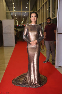 Actress Catherine Tresa in Golden Skin Tight Backless Gown at Gautam Nanda music launchi ~ Exclusive Celebrities Galleries 109.JPG