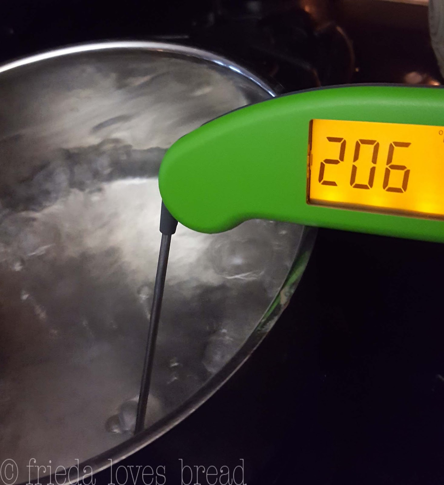 Frieda Loves Bread Thermapen Digital Food Thermometer A
