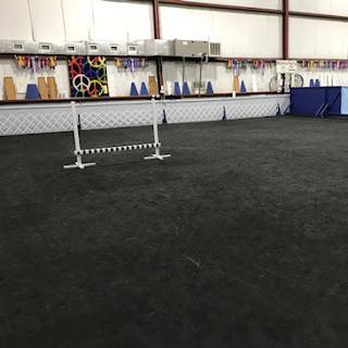 Greatmats Black Dog Agility Mats at MasterPeace Dog Training