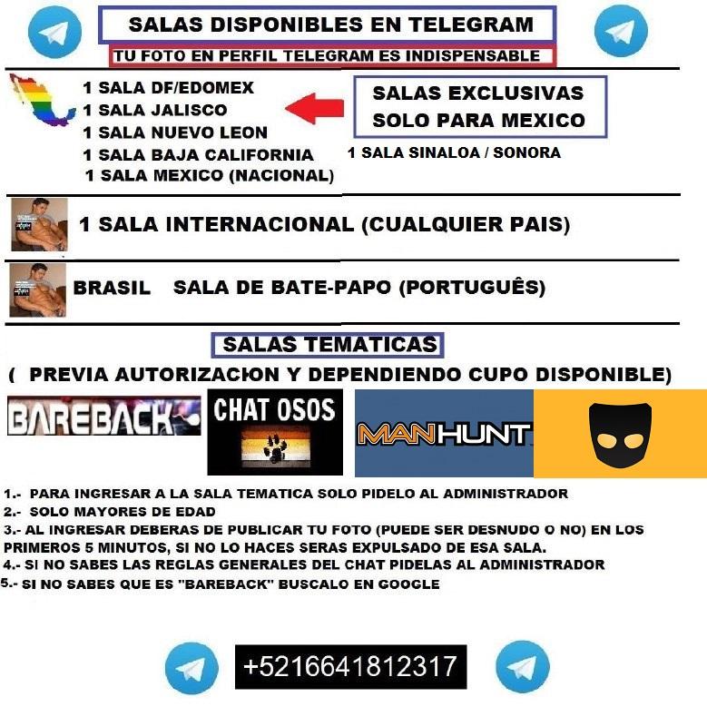Chat Gay , canal de chat gay en espaol - Chat gratis en