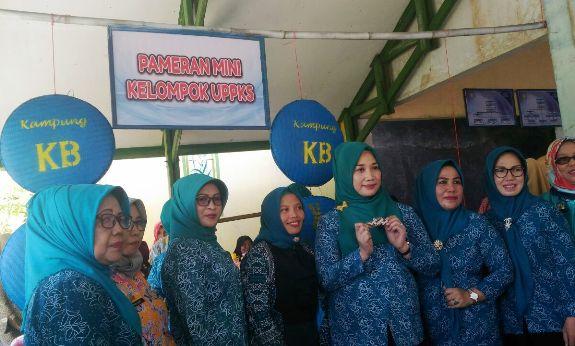 Ny. A.Dwiyanti Musrifah Basli, Tinjau Pelayanan KB