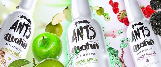Moho Ants