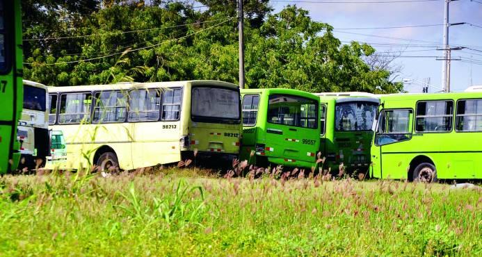 Vehículos de la OMSA estaban más en el taller que en las calles en servicio