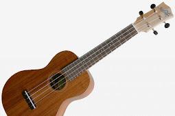 Kunci ukulele senar 3 :