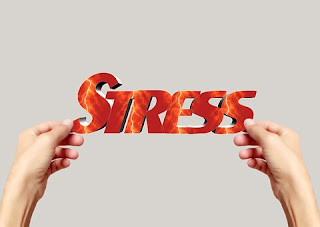 Activates Your Autonomic Nervous System, Stress is A Hardwired Physical Response