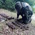 Ο Στρατός Ξηράς εξουδετέρωσε 34 νάρκες, 46 βλήματα και 21 χειροβομβίδες τον Ιούλιο Καθαρισμός 300 στρεμμάτων γης