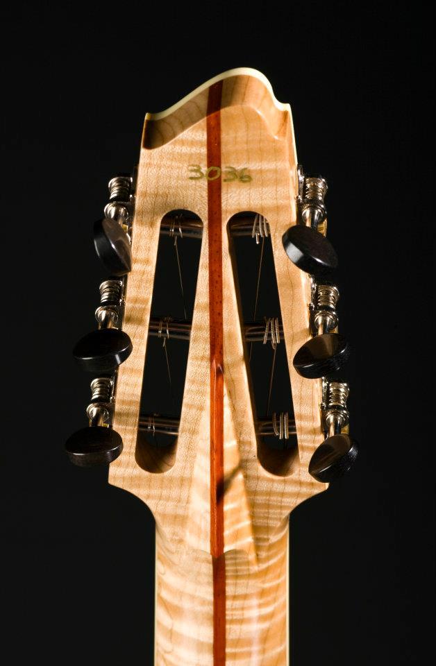 Scott Walker Custom Guitars