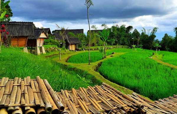 Wisata Dusun Bambu