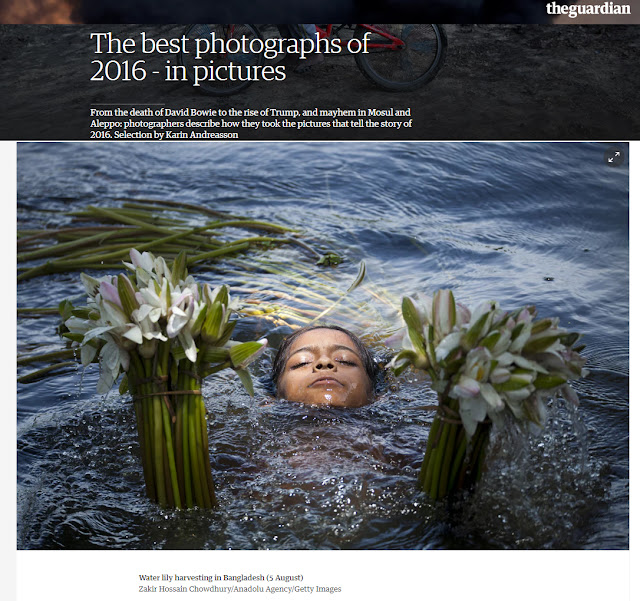 Photographs of the year 2016