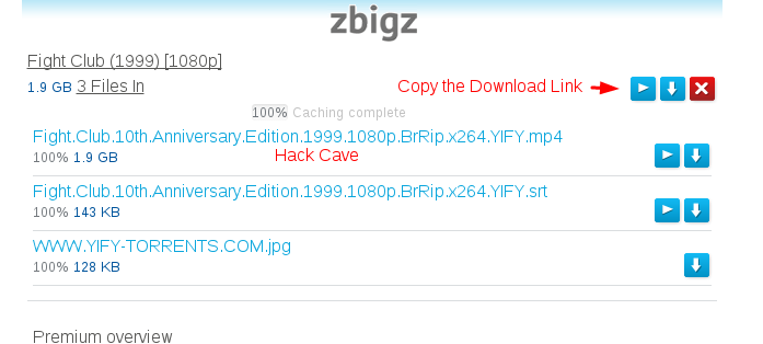 Zbigz Free Premium Account File Deletion Solution & Increase