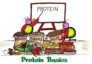 Protein ke fayde  aur  nuksaan aur yeh sabse  jyada kisme paya jata hain.