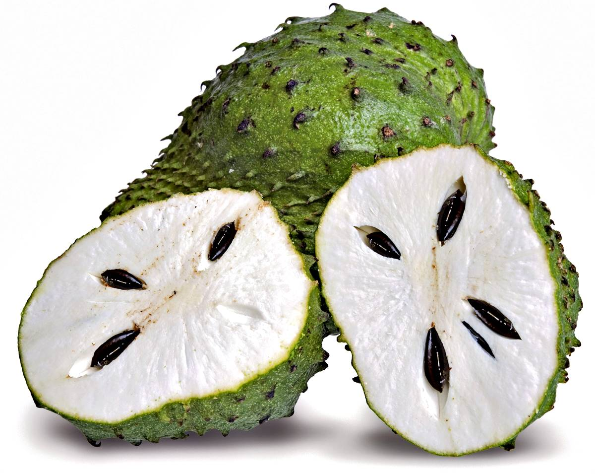 Beneficios y propiedades nutricionales y medicinales de la Guanabana