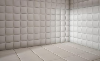 picture of a white padded cell