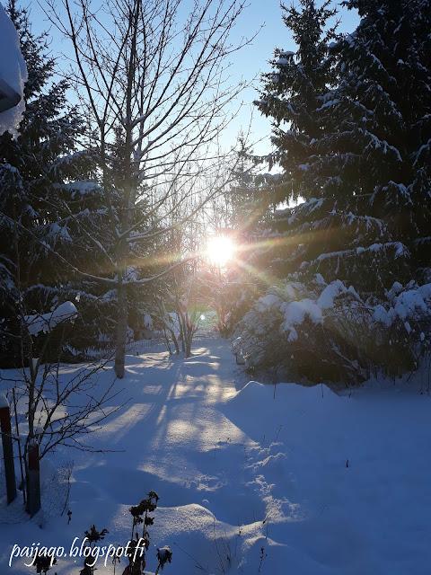 pakkanen aurinko lumi