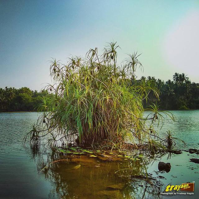 Ramasamudra Lake in Karkala