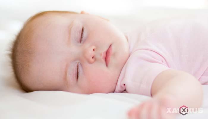 Fakta 2 - Janin 24 minggu mulai menemukan pola tidur dan terjaganya