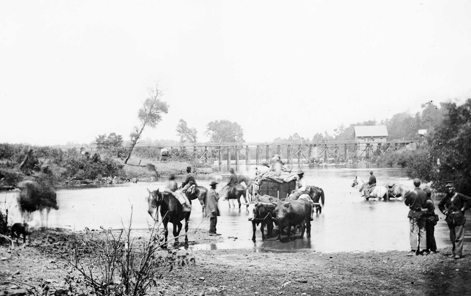 Fugitive African Americans fording the Rappahannock River, Virginia during Pope's retreat in August of 1862.