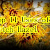 Top 11 Uses of Witch Hazel