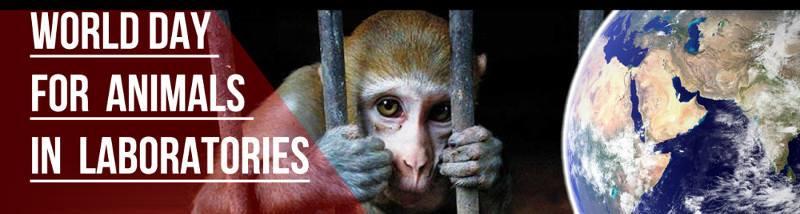World Lab Animals Day