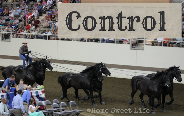 control, five minute friday writing prompt, surrender