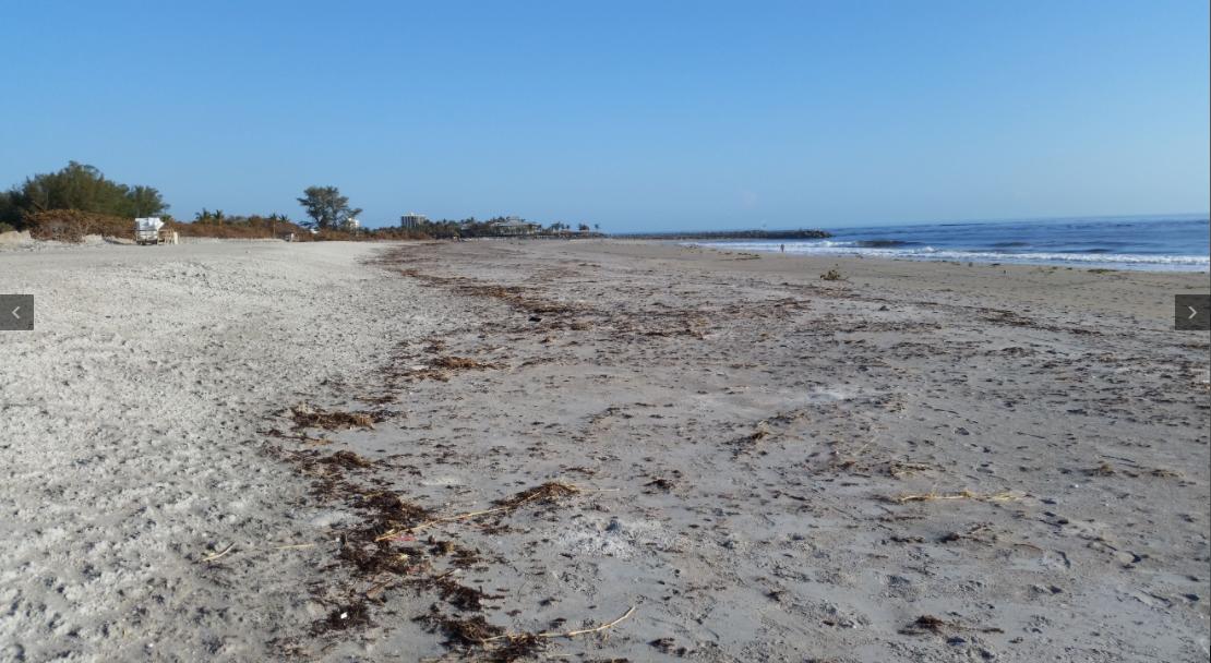 The Treasure Beaches Report Direct From Florida 39 S Treasure