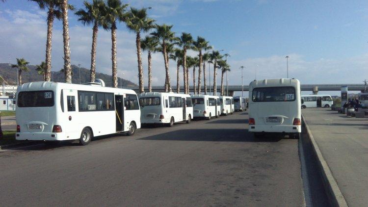 автобусы Сочи