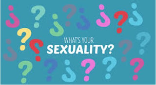 sexual orientation, types of sexualities, non binary individuals, how to know my sexual orientation, abujagirlsjournal, abuja blogger, abuja blogger 2017, what is my sexual orientation, know your sexual orientation, sexuality tests online, nigerian blogger 2017,