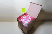öffnen: Japanische Maneki Neko Glückskatze aus Porzellan (Klein, 12 cm)