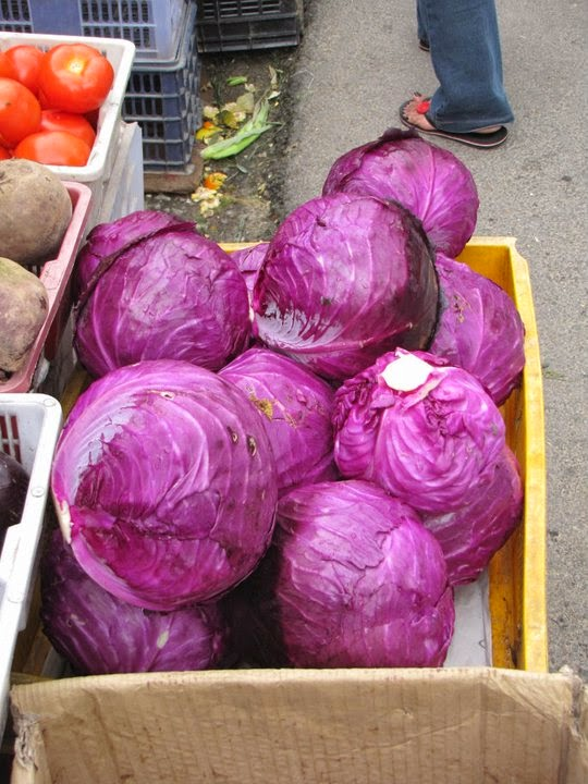 Violet Cabbages