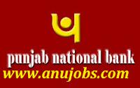 Punjab-National-Bank-Jobs-2015-16 border=