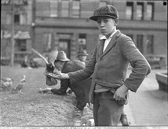 Boy with pigeons at [Circular] Quay, Sydney, 22 June 1935, by Sam Hood. From the collection of the State Library of New South Wales.