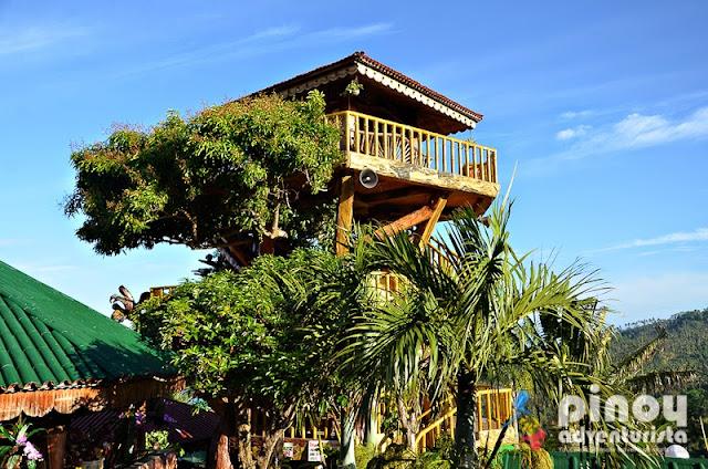 nice resorts near manila