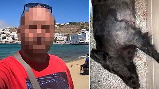 Δολοφονία Σταματιάδη: Οι φωτογραφίες του αγριογούρουνου που οδήγησαν στους φονιάδες