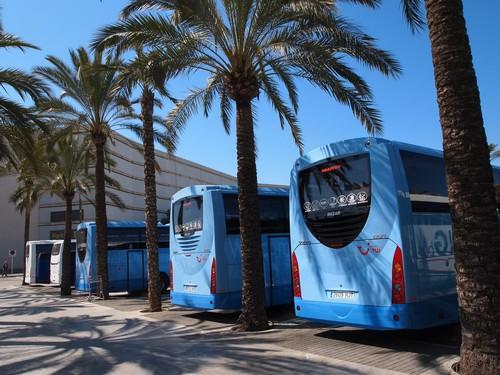 Neues Von Der Insel Impressionen Aus Mallorca Little Germany Im