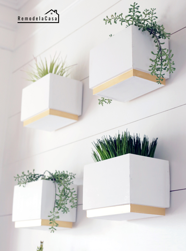 white and gold planters gallery wall