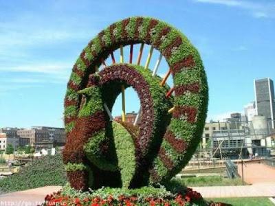 Jardín con forma de pavo real escultura