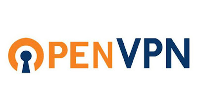 Transmission (seedbox) over VPN using OpenVPN