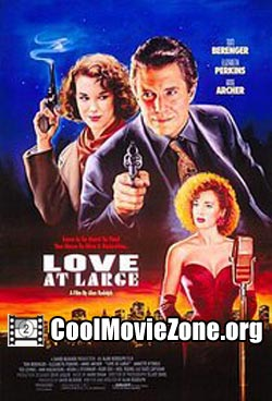 Love at Large (1990)