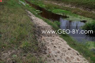 Watering for beasts in Puszcza Nalibocka