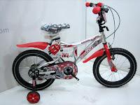 Sepeda Anak Family Champion
