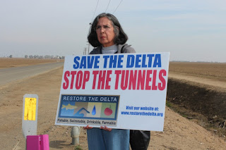 Delta Tunnels Opponents Request 30-Day Extension for Submitting Documents