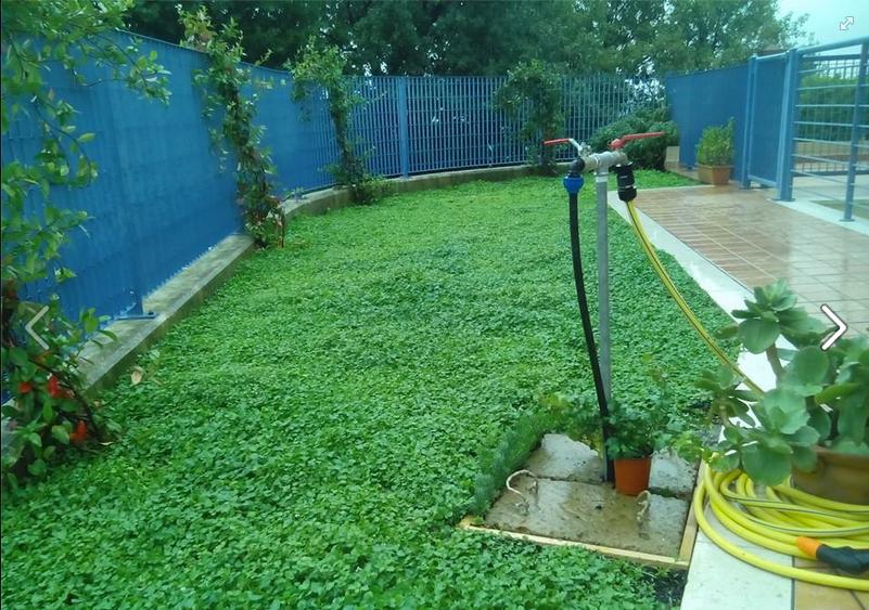 Giardinaggio Naturale Natural Gardening Consociazione Phyla