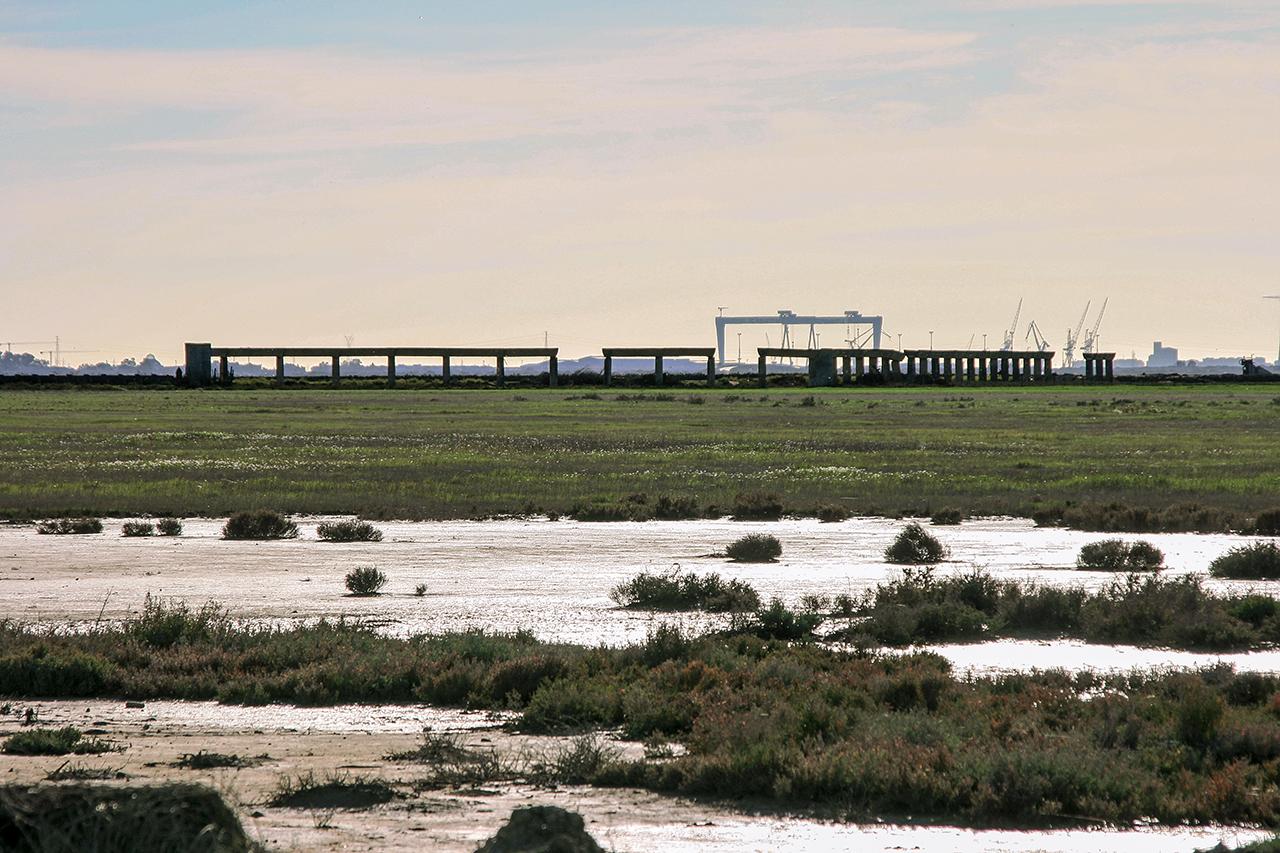 Entorno a jerez humedales en torno a jerez y 3 un for Lagunas artificiales construccion