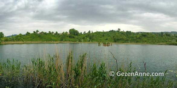 yeşil fındık bahçeleri arasında Gaga Gölü, Fatsa Ordu
