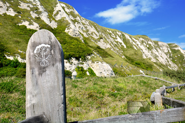 Białe klify Samphire Hoe w Anglii - atrakcje turystyczne w Dover